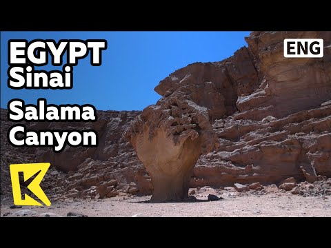【K】Egypt Travel-Sinai[이집트 여행-시나이]살라마 협곡 투어/Salama Canyon Safari/Tour/Desert/Driving/Trekking/Camel