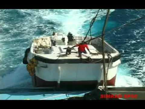 pesca de atun profesional