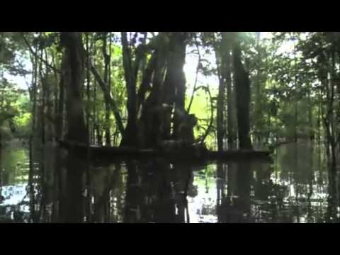 The Mosquito Coast UNOFFICAL TRAILER
