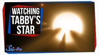Why Everyone Was Watching Tabby's Star Last Weekend