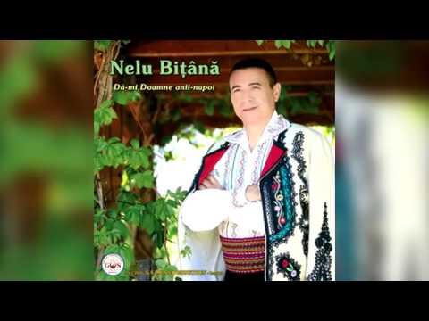 Nelu Bitana - Daca nu-ti cunosti dusmanul (Official Audio).