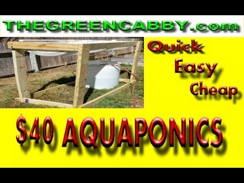 Cheap & Easy $40 AQUAPONICS / LARGE SCALE DIY How-To Barrelponics Aquaponic Set Up