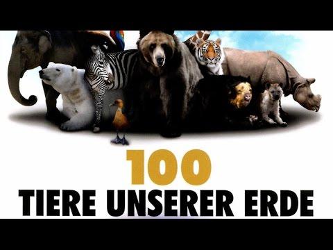 100 Tiere unserer Erde (2013) [Dokumentation] | Film (deutsch)