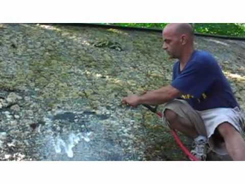 How to remove moss from a roof :)