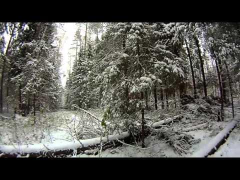 Видео как нарисовать следы на снегу