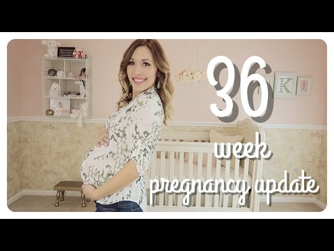 36 week pregnancy update | did baby drop?