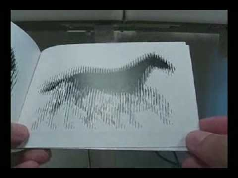 animated optical illusion