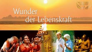 WUNDER DER LEBENSKRAFT - WINNER Cosmic Angel Award 2015