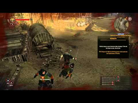 The Witcher 2 Tutorial - Combat Basics - Striking and Parrying [HD 720p]