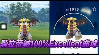 騎拉帝納100%Excellent 曲球  Pokemon Go ポケモンGO ギラティナ Giratina  기라티나  攻略法  エクセレント 定圈 騎拉帝納抓法