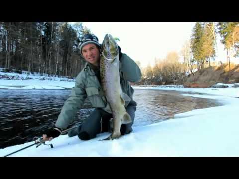 павлыш рыбалка