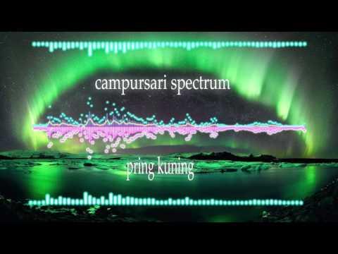 campursari pring kuning audio spectrum
