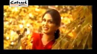 KAHENDE NE NAINA | Harbhajan Shera | Superhit Punjabi Songs | Popular Punjabi Videos