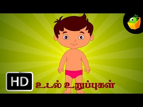 Udal Uruppugal - Chellame Chellam - Cartoon animated Tamil Rhymes For Kids video