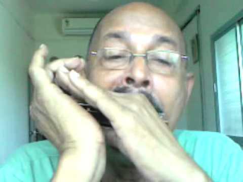 jaane woh kaise log the jinke pyaar ko pyaar mila -harmonica