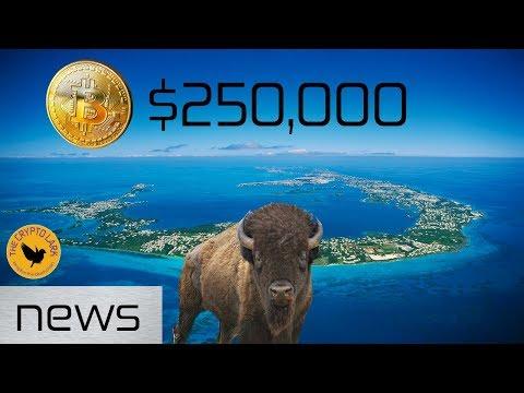 Bitcoin & Cryptocurrency News - Bitcoin $250,000, Bermuda Wants Crypto Biz, & Skin Wallets