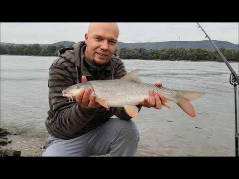 Eco horgászat - 10. rész - Őszi Duna (Duna Budapest)