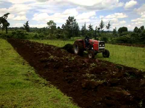 Massey Ferguson 375 with Baldan