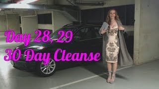 Day 28 & 29 | 30 Day Cleanse