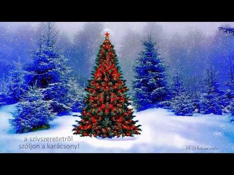 Aranyosi Ervin : Karácsonyi história