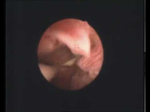 kakie-chuvstva-bivayut-pri-orgazme