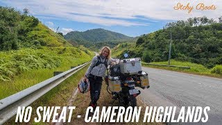 NO SWEAT - Cameron Highlands - Royal Enfield Himalayan BS4 (2018) - [ROUND 35]