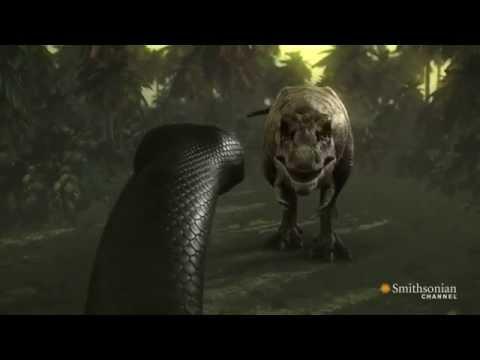 Titanoboa vs t Rex Snake Titanoboa vs t Rex