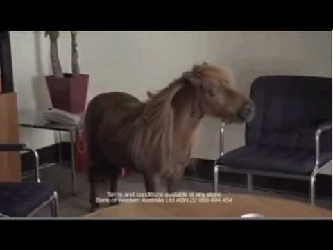 "Gotta love the talking pony in this! ""hmmmmmmmm""....... ""that's what i did say"" Dunno why, but it makes me laugh..."