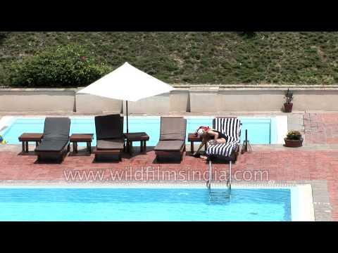 Swimming pool area at Hyatt Regency Kathmandu, Nepal