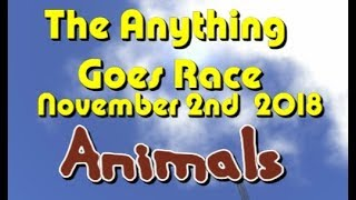 Anything Goes Race 2018  11  02  Animals