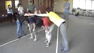 Trust V - Duct Tape Teambuilding Game