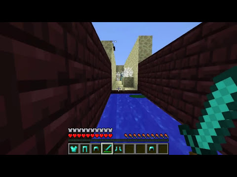Minecraft Mini-Game : RUN FROM THE BEAST!