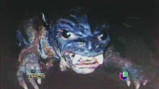 El 'Chupacabras' podría estar de regreso en El Salvador