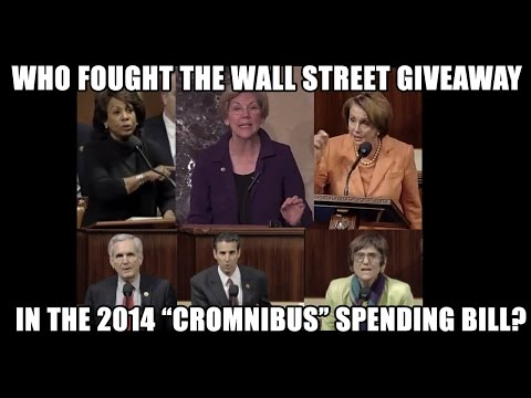 Which Reps Fought Wall Street's CRomnibus Giveaway?