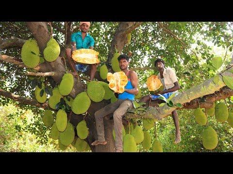 Farm Fresh JACKFRUITS Cutting and Eating in my Village | village food taste