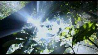 Watch Michael Jackson Planet Earth video