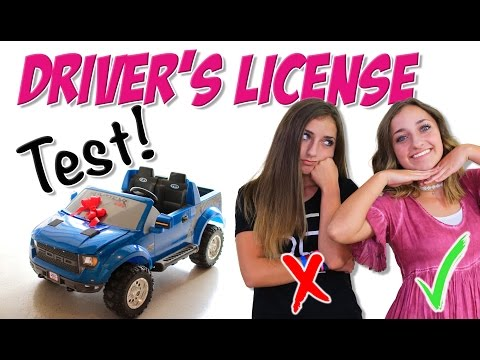 Taking the Driver's License Test | Brooklyn and Bailey