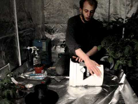 Cheap Hydroponic Bubbleponic System Diy Works Great