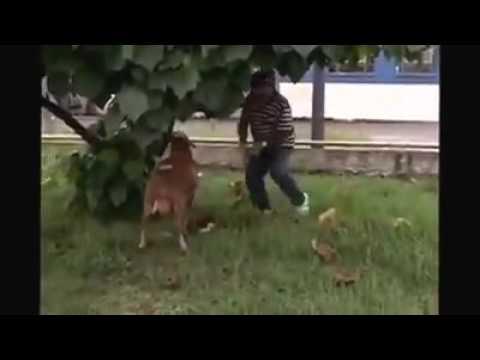 Haheho Romantic  Mzansi Tv Video thumbnail