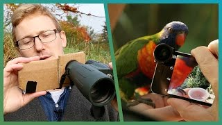DIY Tips To Photograph Birds Using Your Smartphone - Cheap Shot Challenge - Earth Unplugged