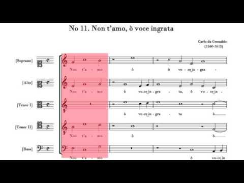 Carlo Gesualdo - Non t