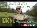River Severn Barbel and Chub