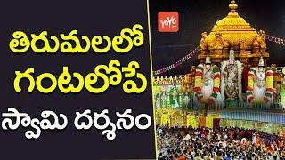 తిరుమలలో గంటలోపే స్వామి దర్శనం | Now Tirumala Divya Darshanam in Two Hours