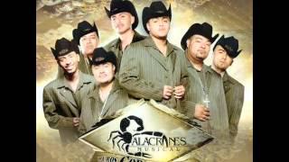 Alacranes Musical   500 Balazos