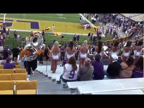 Tiger Band Enters Stands in