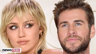Miley Cyrus & Liam Hemsworth AVOID Run-In At Pre-Oscars Party!