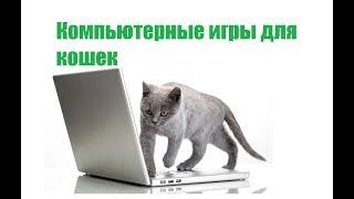 Игры Для Кошек На Планшете & Компьютерные Игры И Видео Для Кошек. Ветклиника Био-Вет