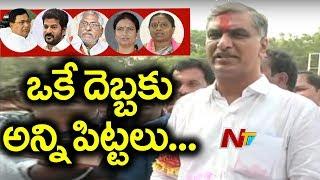 TRS Leader Harish Rao Back to Power with 1.2Lks Majority   NTV