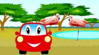 Car for children. Learning Wild Animals for Kids - Teaching Animals Video for Toddlers