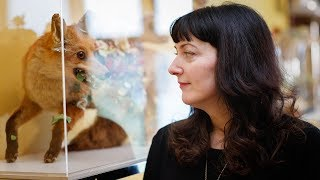 'It's our entire relationship with animals': Angela Singer on her art and taxidermy